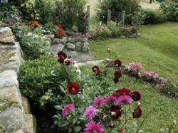 componentes del jardin